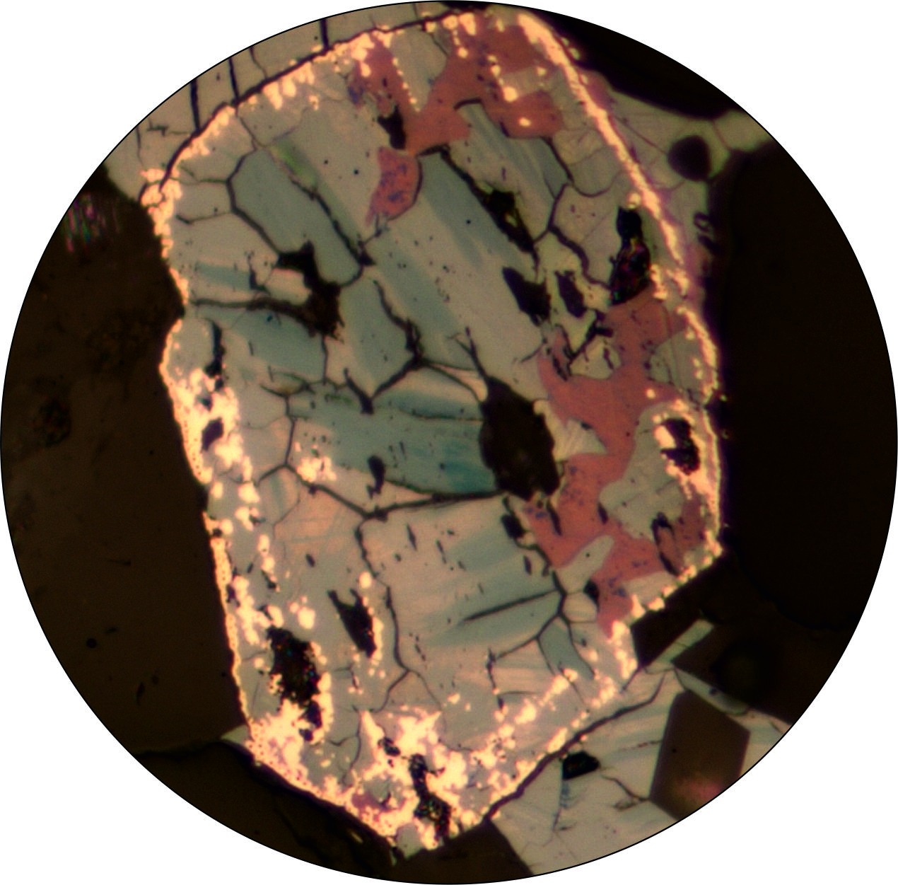 thin section in reflected light